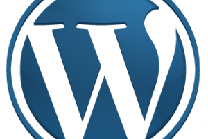 Plugin WordPress: cosa sono?